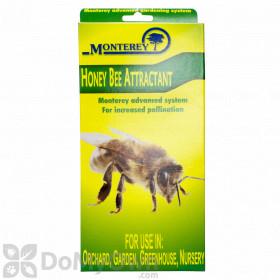 Monterey Honey Bee Attractant