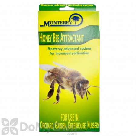 Monterey Honey Bee Attractant