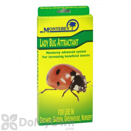 Monterey Lady Bug Attractant