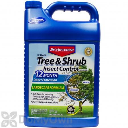 Bio Advanced 12 Month Tree & Shrub Insect Control Landscape Formula