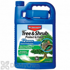 Bio Advanced 12 Month Tree and Shrub Protect and Feed II Concentrate Gallon