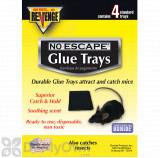 Revenge Baited Glue Trays for Mice - CASE (12 packs of 4 / 48 trays)