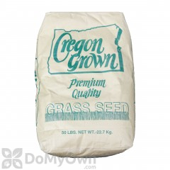 Annual Rye Grass Seed
