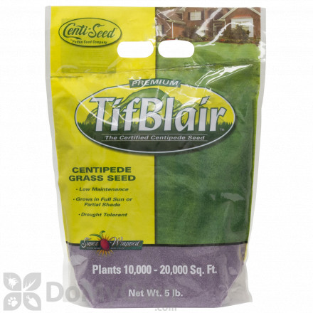 TifBlair Centipede Grass Seed - 5 lbs.