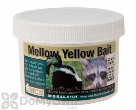 WCS Mellow Yellow Paste Bait