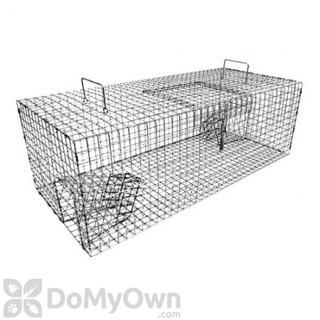 Tomahawk Starling Trap with Two Trap Doors - Model 503