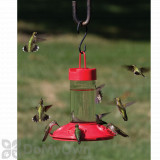 Songbird Essentials  Dr. JB All Red Clean Hummingbird Feeder 16 oz. (SE6002)