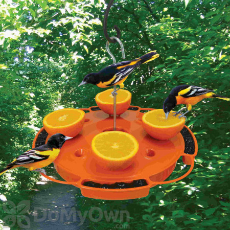 Songbird Essentials Ultimate Oriole Feeder (SE905)