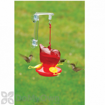 Songbird Essentials Window Red Bird Hummingbird Feeder 12 oz. (SEBCO312W)