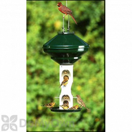 Vari - Crafts Mixed Seed Bird Feeder Without Cage and Pole 3 gal. (VCAV2M)