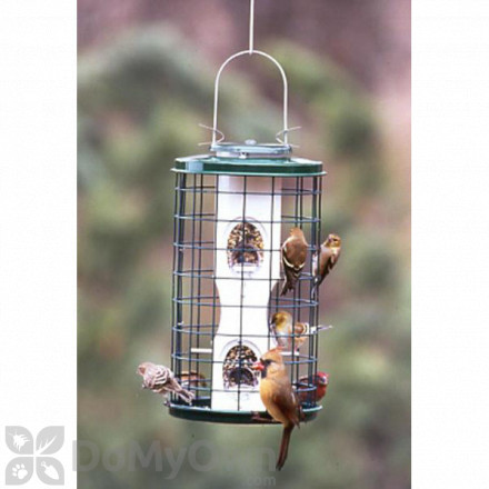 Vari - Crafts Mixed Seed Bird Feeder 1 qt. (VCAV3M)