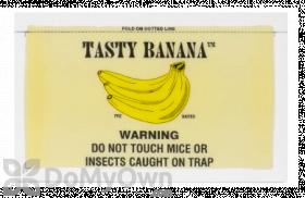 Catchmaster Tasty Banana Mouse Glue Board 72TB