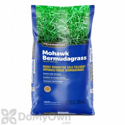 Pennington Mohawk Bermuda Hulled Certified Penkoted Seed