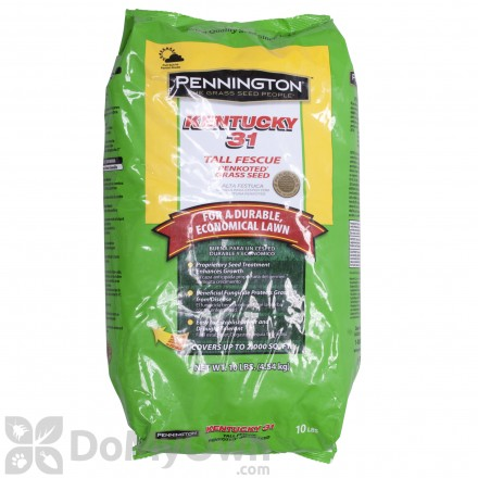 Pennington Kentucky 31 Tall Fescue Penkoted Grass Seed