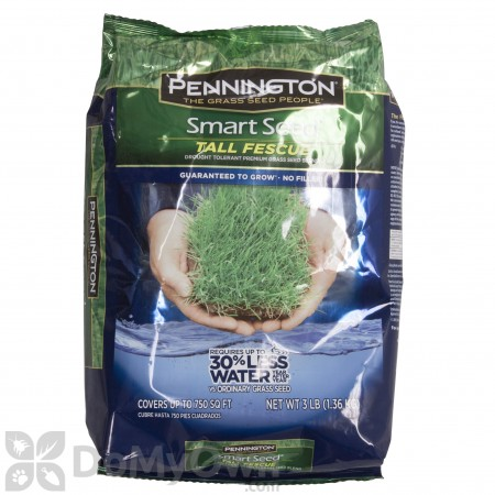 Pennington Smart Seed Tall Fescue Blend