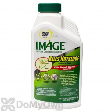 Image Kills Nutsedge Concentrate - CASE