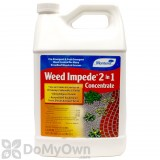 Monterey Weed Impede 2 in 1 Herbicide Gallon