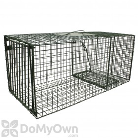 Duke Traps Heavy Duty Large Raccoon and Fox Trap (1114)