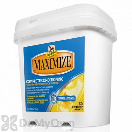 Absorbine Maximize Conditioning Supplement