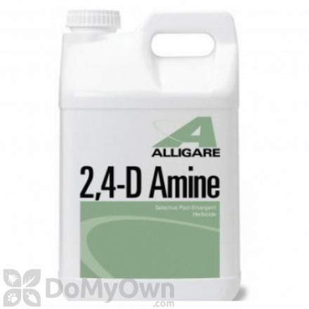 Alligare 2 , 4 - D Amine Herbicide
