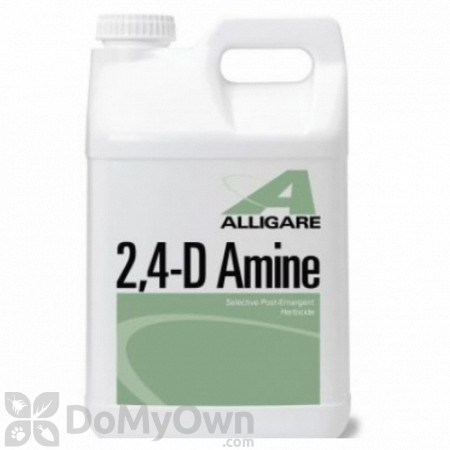 Alligare 2 , 4 - D Amine Herbicide