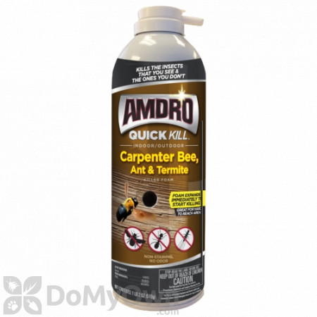 Amdro Quick Kill Carpenter Bee, Ant and Termite Killer Foam