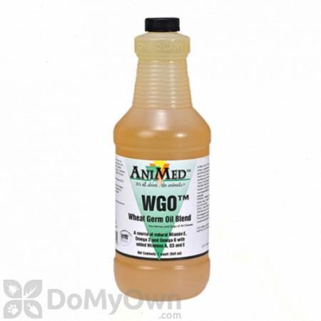 AniMed Wheat Germ Oil Blend Supplement