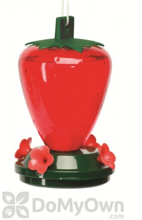 Artline Strawberry Hummingbird Feeder 24 oz. (5555)