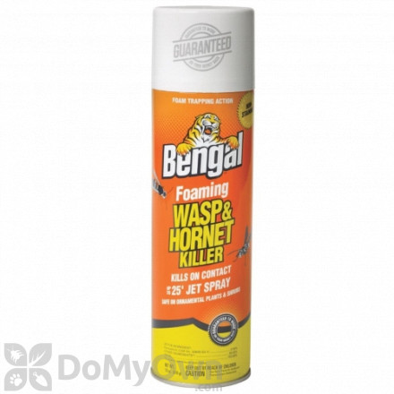 Bengal Foaming Wasp and Hornet Spray