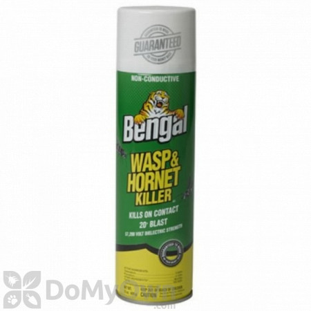 Bengal Wasp and Hornet Killer