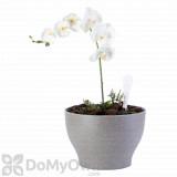 Bloem Eco Self-Watering Modern Planter Flower Pot