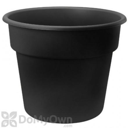 Bloem Dura Cotta Planter 6 in. Black