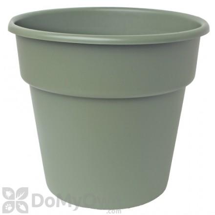 Bloem Dura Cotta Planter 8 in. Living Green