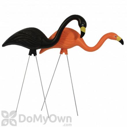 Bloem Spooky Flamingo 25 in. Halloween Black Orange (2 - Pack)