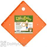 Bloem Ups-A-Daisy Square Planter Insert 14\