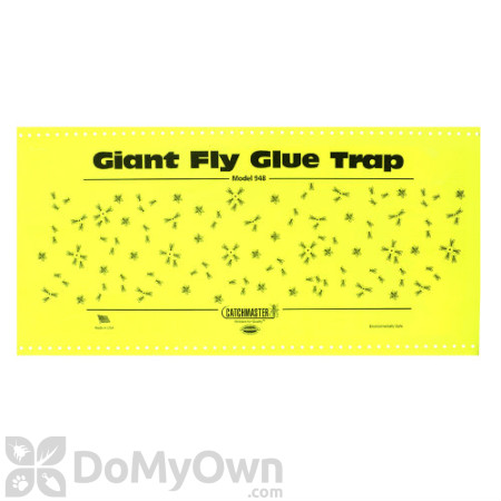 Catchmaster Giant Fly Glue Trap with Attractant (948)