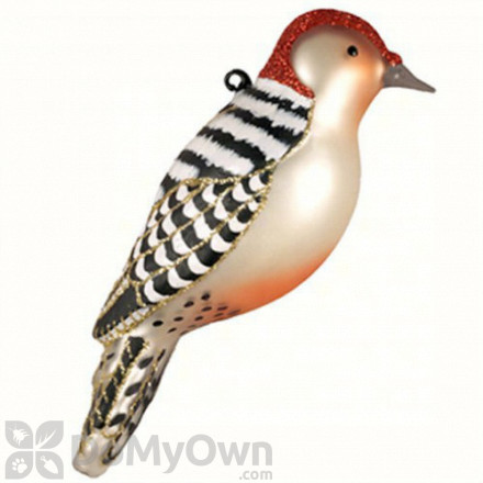 Cobane Red Bellied Woodpecker Ornament