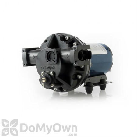 Delavan 5840201 Electric Pump