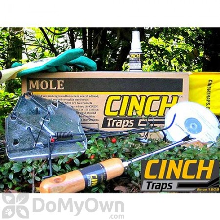 CINCH Traps Mole Trap Deluxe Kit