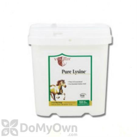 Pure Lysine Amino Acid Supplement