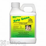 Southern Ag Kelp Green