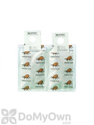 Koppert Thripex-Plus (Neoseiulus cucumeris) 500 pack