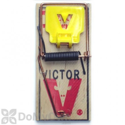 Victor Mouse Trap M325 Pro - Holdfast (12 pack)
