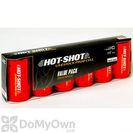 Hot-Shot High Amp. Alkaline Batteries - Size C