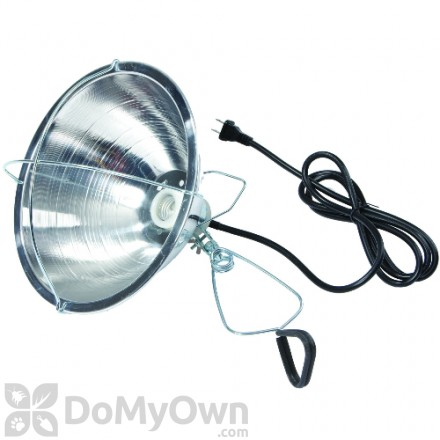 Little Giant Brooder Reflector Lamp 10.50 in.