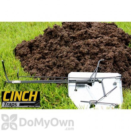 Gopher Traps Trapping Gophers How To Trap A Gopher Domyowncom