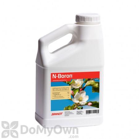 Brandt N-Boron