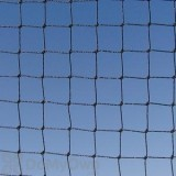 Bird Barrier 3 / 4 in. Black StealthNet Standard 25\' x 50\' Bird Net (n1-b120)