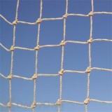 Bird Barrier 3 / 4 in. Stone StealthNet Heavy Duty 50\' x 75\' Bird Net (n1x-s230)