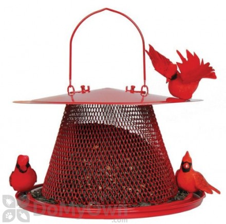 No / No Feeder Red Cardinal Bird Feeder 2.5 lb. (C00322)